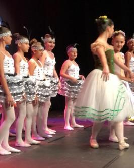 Espetáculo de ballet: O jardim dos poetas - Foto 218