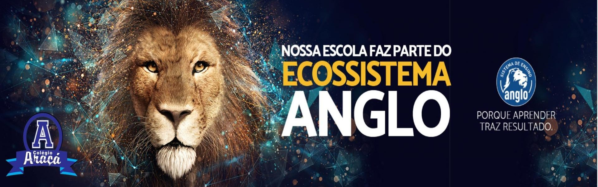 Ecossitema Anglo